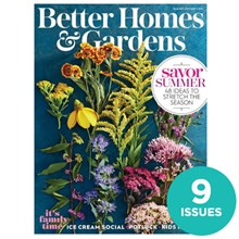 Better Homes & Gardens NCA09